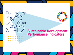 Sustainable Development Performance Indicators for SSE: How to Measure Progress Toward the SDGs