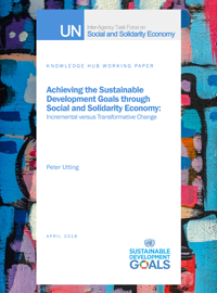 Achieving the Sustainable Development Goals through Social and Solidarity Economy: Incremental versus Transformative Change